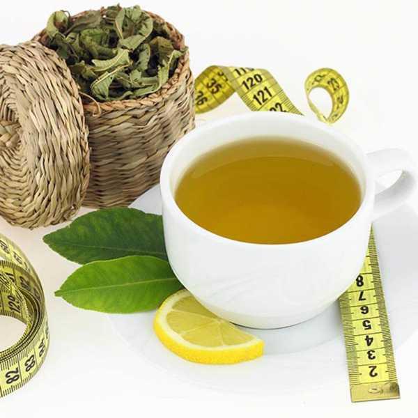 чай для похудения в аптеках беларуси отзывы